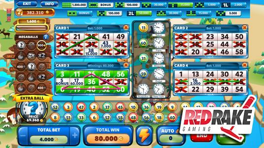 Tenth Video Bingo designed by Red Rake Gaming