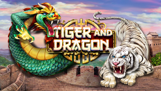 New release Tiger and Dragon. Fight for the treasure!